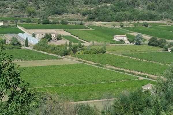 tour de bike pela Provence