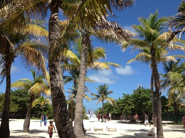 south beach dicas