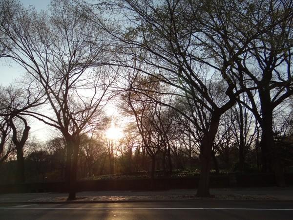 pôr do sol ny