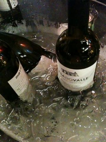 Vinhos portugueses