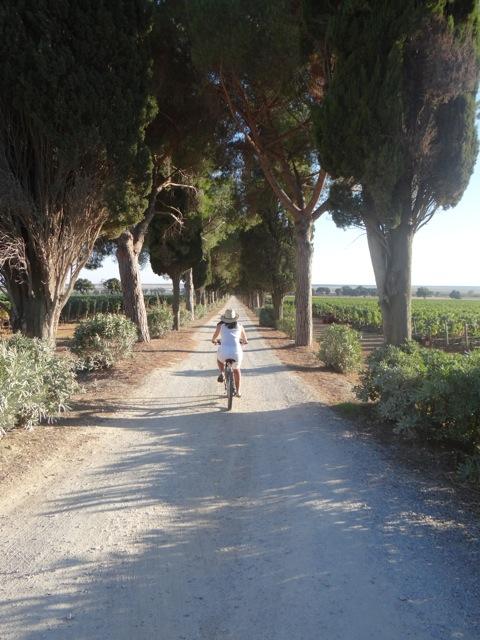 L'Andana de bicicleta