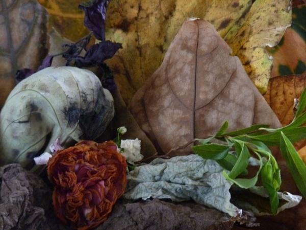 Zuka e Brigite's recebem exposições em homenagem ao Rio