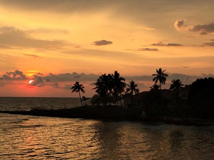capa paradise coast