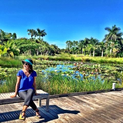sofisticada paradise coast 2