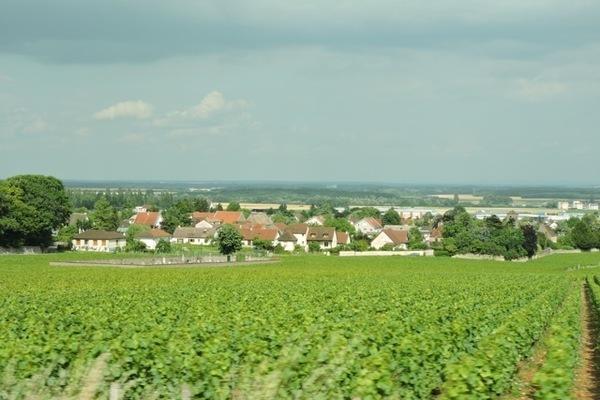 10 motivos para ir a Bourgogne