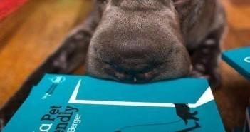Lançamento do Guia Pet Friendly Rio, por Cris Berger 5