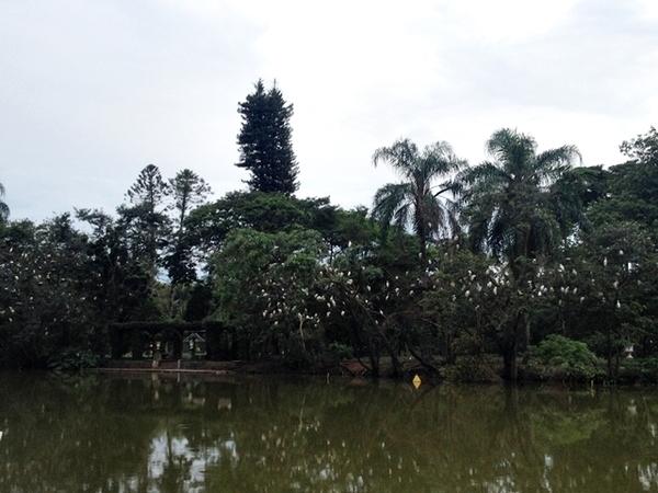 Parque das Águas em São Lourenço 11