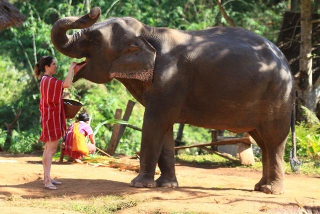 10 dicas de passeios na Tailândia