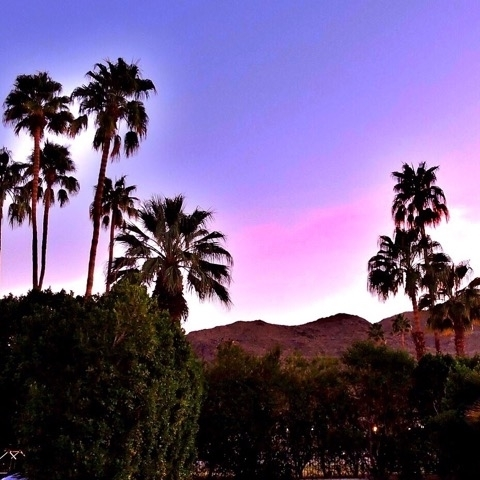 Parker, um dos melhores hotéis de Palm Springs 6