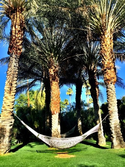 Parker, um dos melhores hotéis de Palm Springs 9