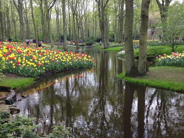 Um rio cruaz o parque das tulipas e deixa a paisagem ainda mais bonita