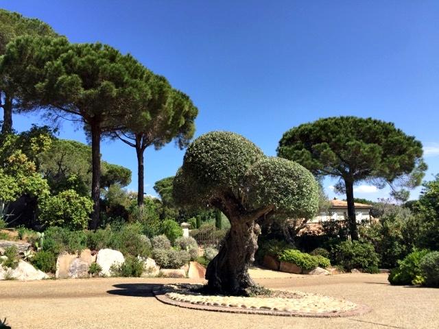 Hotel Villa Marie Saint Tropez 24