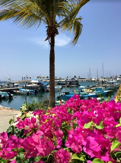Puerto Vallarta e Riviera Nayarit, no México 29