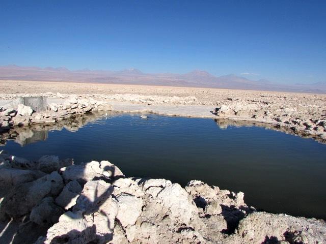 O que fazer no Atacama - Salar de Atacama