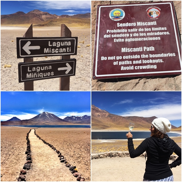 O que fazer no Atacama - Placas e Lagoas