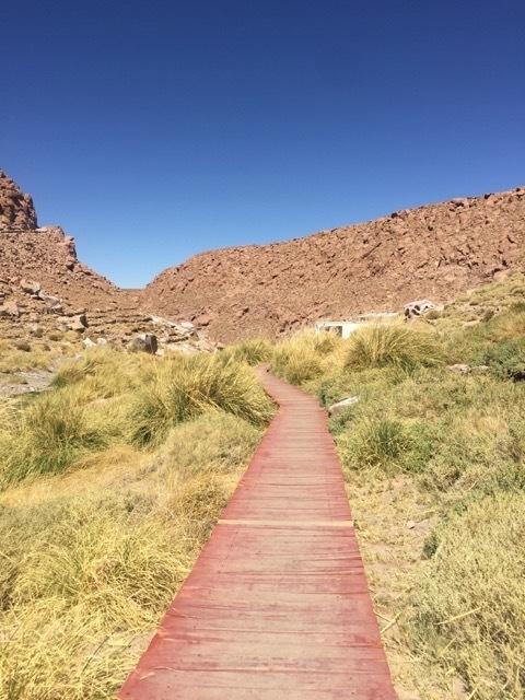 O que fazer no Atacama -Caminho para as Termas