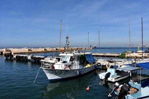 Porto de Jaffa