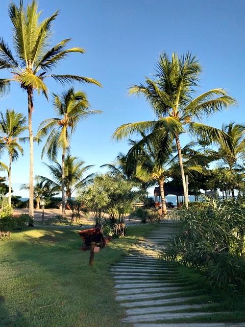 Muito verde no Campo Bahia
