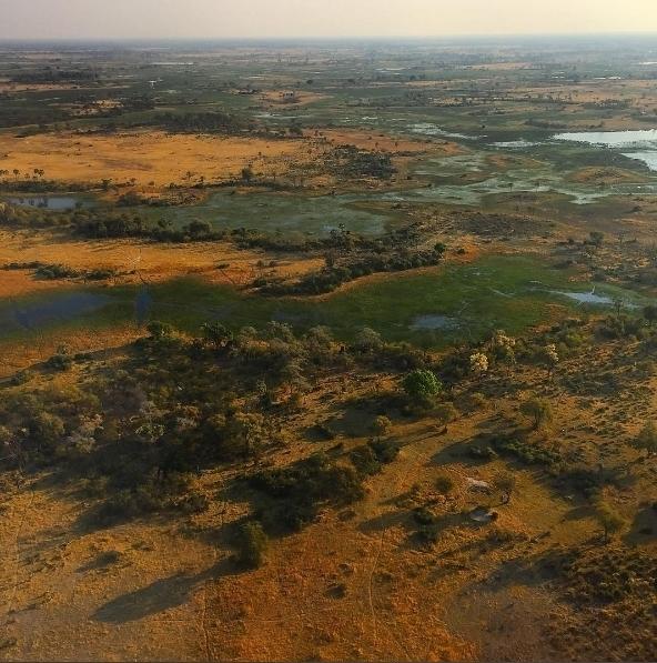Pedro voando pela Botsuana