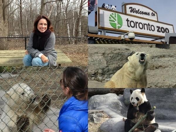 Visita de Renata ao Zoológico de Toronto