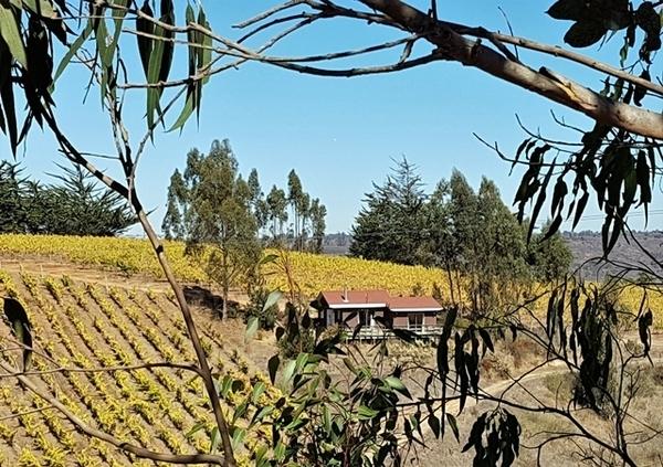 hotéis de vinho no Chile