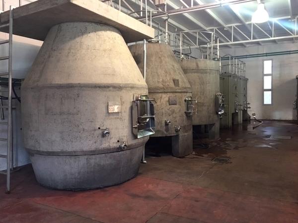 vinícolas imperdíveis em Mendoza