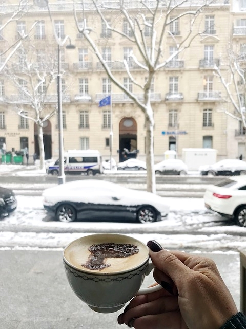 Vista do Peninsula Paris com neve