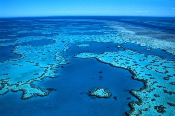 A grande barreira de corais, na Austrália, é uma das 7 maravilhas naturais do mundo