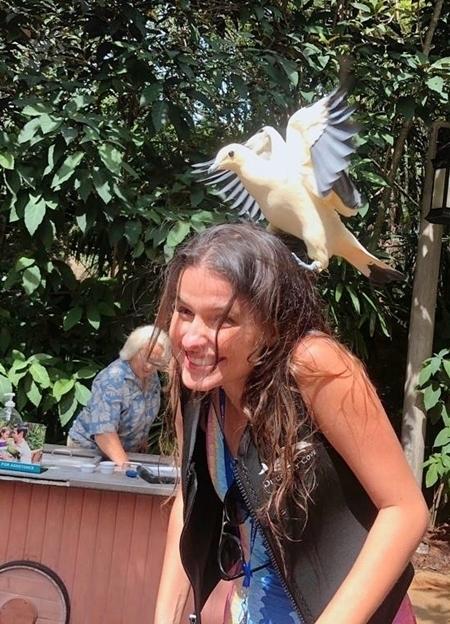 Duda com pássaro na cabeça no Discovery Cove