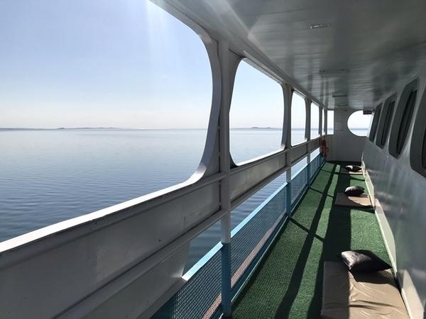 passeio de barco pelo rio são francisco 5