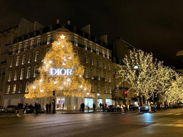 decoração de natal em paris 5