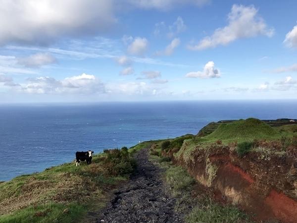 o que fazer na Ilha da Madeira 17