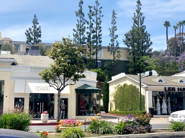 rua arborizada com lojas