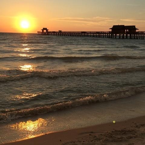 Um roteiro por Paradise Coast, na Flórida