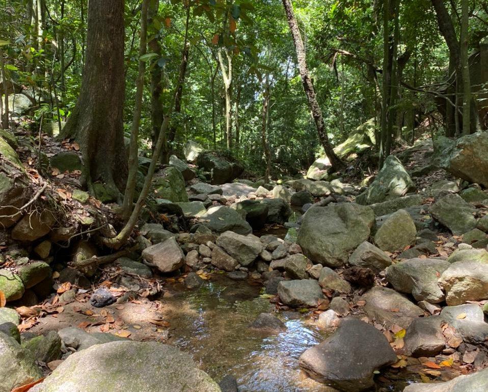 Praias e cachoeiras na Zona Oeste do Rio