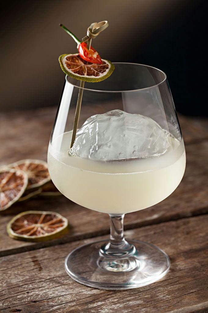 Mixologistas ensinam drinques com gin para fazer em casa
